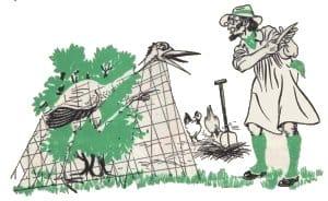 El granjero y la cigüeña
